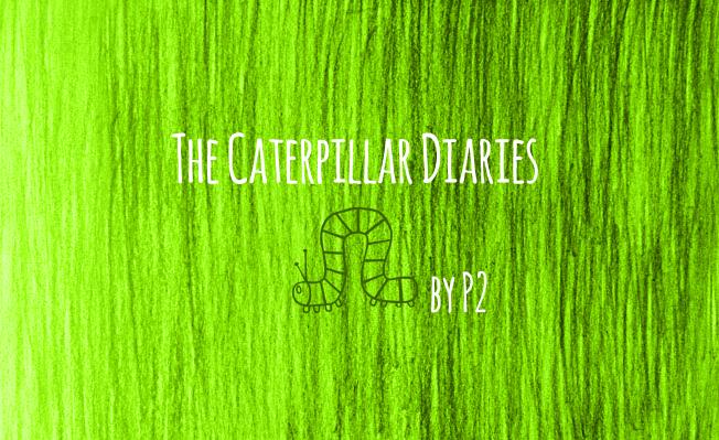 Caterpillar_Diaries_Title